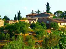 Tenuta le Pici - Castelnuovo Berardenga