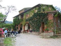 Azienda Agricola Rendola Riding - Montevarchi