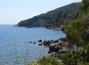 Costa Cilentana