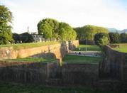 Lucca's walls
