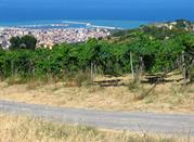 Il porto visto dalle colline