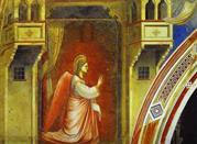 Frescoes by Giotto. Cappella  degli Scrovegni