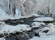 Pesio snowy river