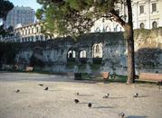 View. Arena Romana