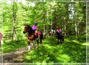 La Valle dei sentieri a piedi e a cavallo