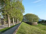Lucca, walls