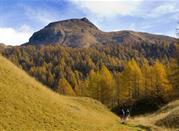 Passeggiata sui monti della Verbania