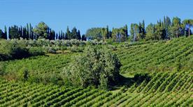 Riolo Terme