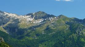 Vallee Camonica