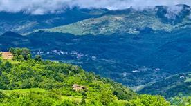 Firenze e Area Fiorentina