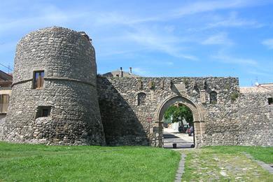 Porta Venosina