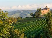 Langhe: la tierra de los vinos - Langhe