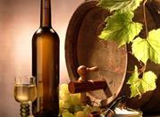 Vacacione de vino y comida en Basilicata: rutas y specialidad -