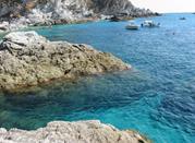 Ricadi y sus protagonistas: los fondos marinos - Ricadi