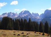 San Lorenzo in Banale – nel cuore delle Dolomiti di Brenta - San Lorenzo in Banale