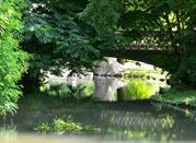 A green Milan - Milano