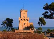 Torre di Cerrano: a difesa delle bellezze costiere - Pineto