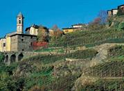 La Valtellina, le cœur des Alpes - Abbadia Cerreto