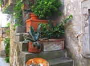 Calcata – podwójne życie średniowiecznego miasteczka - Calcata
