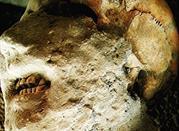 Pompei – die konservierte Katastrophe -