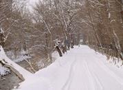 Semana Blanca en Alta Valle del Sangro - Pescasseroli