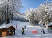 Campigna, relax and ski in the Centre of Italy - Appennino Bolognese