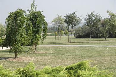 Parco san Giuliano