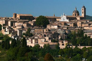 Duomo, Urbino