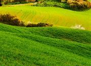 Appuntamento sulla  Costa degli Etruschi - Costa Degli Etruschi
