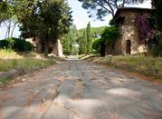 Le strade dei vini e dei sapori dei Castelli Romani - Roma
