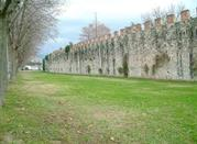 The Ancient Walls - Pisa