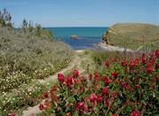 Vasto: riserve marine, spiagge incontaminate e paesaggi medievali - Vasto Marina