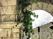 Provincia di Campo Basso, un giorno di vino -