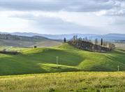 Viaggio nella epoca Etrusca - Murlo