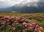 La Val Comelico: le tue vacanze sulle Dolomiti - Comelico Superiore