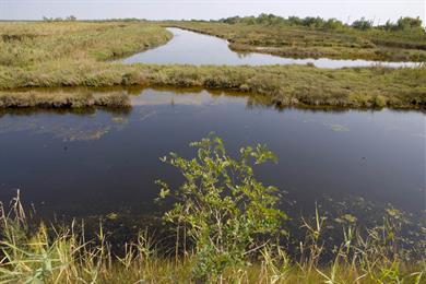 Laguna Nord di Lio Piccolo
