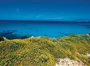 Cretaccio und Pianosa - Isole Tremiti