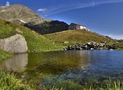 Escursione al Rifugio Bertacchi e Passo Niemet da Montespluga - Madesimo