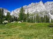 Piemonte, la provincia del riso -