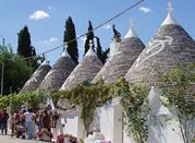 Alberobello e i suoi trulli - Alberobello