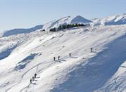 Cimone, sci, buon cibo e divertimento! - Monte Cimone
