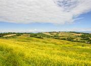 Die Markgrafschaft Montferrat - Monferrato