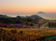 Explore the vineyards and serenity of Colli Euganei - Colli Euganei