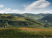 Langhe lands of wine: part two - Langhe