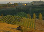 Les trésors du Montferrat - Monferrato