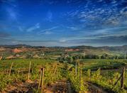 Chianti: el corazón de Toscana - Chianti
