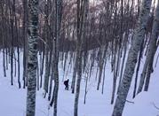 ¿En la búsqueda de una estación de esquí diferente? - Careggine