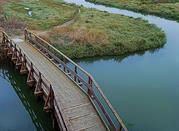 Castiglione della Pescaia, meta turistica nel cuore della Maremma  - Castiglione della Pescaia