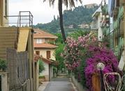 Bordighera – la città dei fiori - Bordighera