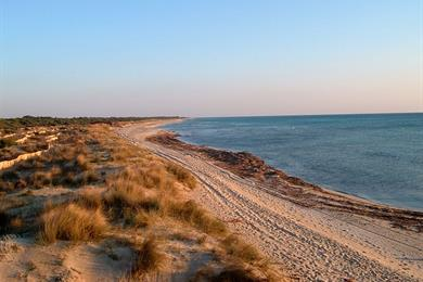 Ugento Coast